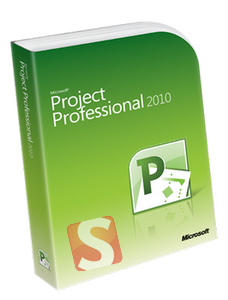 Microsoft Project Professional 2010